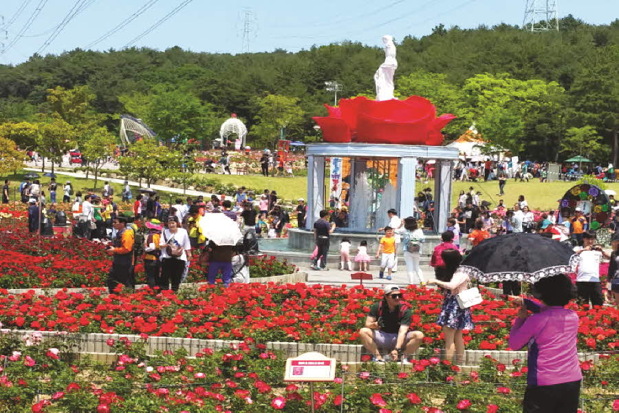 울산대공원장미축제2.jpg